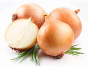 cipolla ortaggi bianchi