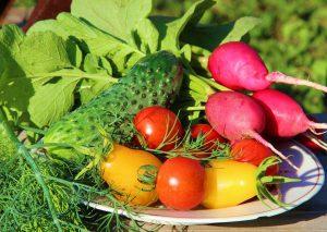differenza tra ortaggi e verdure